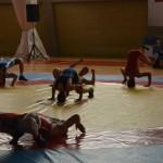 Παρουσίαση πάλης - Φεστιβάλ ΚΝΕ - Βούλα Ζυγούρη 14