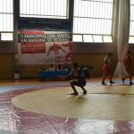 Παρουσίαση πάλης - Φεστιβάλ ΚΝΕ - Βούλα Ζυγούρη 6